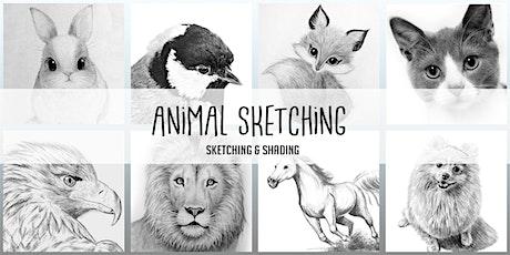 Animal Sketching Virtual Art Club|  8 Weeks | Saturdays @10AM (Ages 6+) tickets