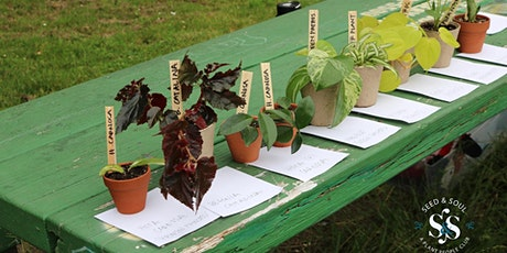 San Francisco Fall 2020 Plant Swap tickets