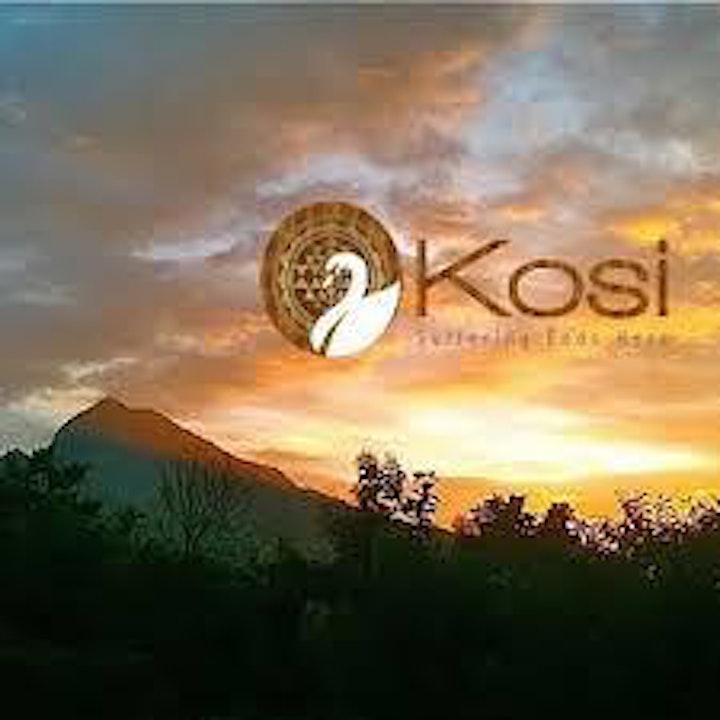 Webinar with Kosi; Logos - The Great Secret of Moksha image