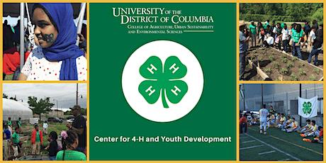 VIRTUAL Advancing Youth Development Reimagined: Program Design tickets