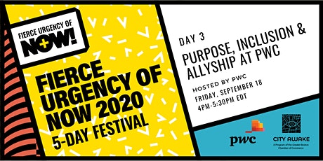 Purpose, Inclusion, & Allyship at PWC – Fierce Urgency of Now! tickets