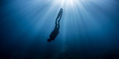 Diving Deeper: Consecutive Interpretation tickets