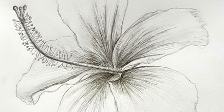 Get Drawing Flowers: Art Therapy Workshop tickets
