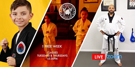 1 Week Free - Live Online Martial Arts Class via Zoom tickets