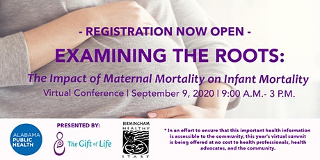 Examining The Roots: The Impact of Maternal Mortality on Infant Mortality tickets