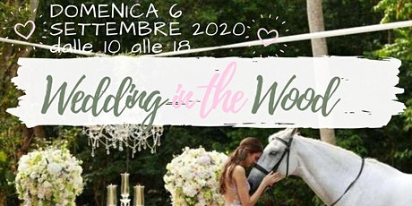 WEDDING IN THE WOOD biglietti