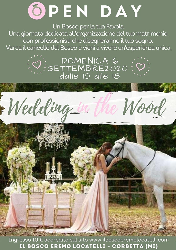 Immagine WEDDING IN THE WOOD