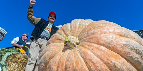 47th Safeway World Championship Pumpkin Weigh-Off, Half Moon Bay billets