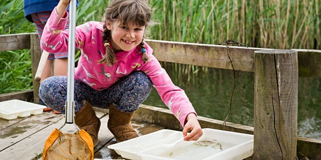 Wild Exmouth Family Pond Dipping tickets