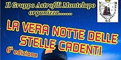 La vera notte delle stelle cadenti  - Osservatorio Astronomico Beppe Forti biglietti