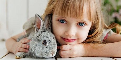 Lezing: Een fijn konijn tickets
