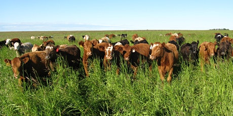 FFGA Perennial Pasture Rejuvenation tickets