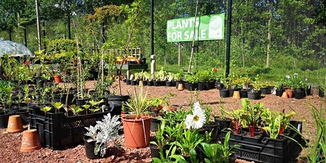 Castlebank early evening Plant Sale tickets