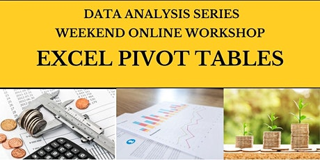 Excel Pivot Tables tickets
