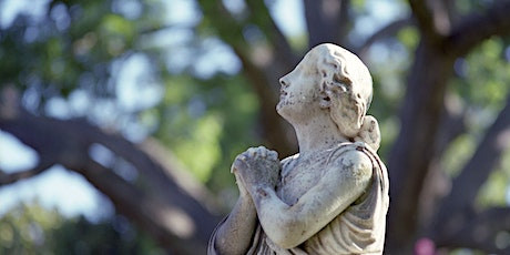 A History of Yellow Fever and Elmwood Cemetery: Zoom Presentation tickets