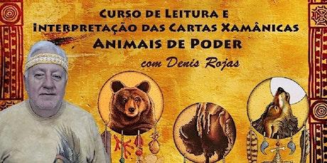 Curso Interpretação e Leitura das Cartas dos Animais de Poder – Denis Rojas ingressos