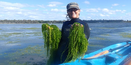 Aquatic Plants: Indicators of waterway health? webinar tickets