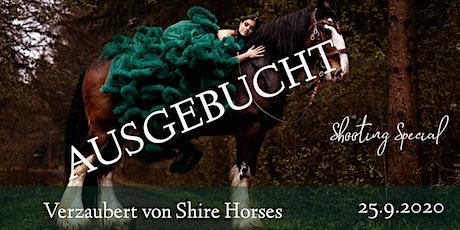"Shooting Special ""Verzaubert von Shire Horses"" Tickets"