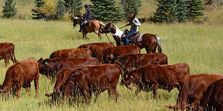 Rise for Resilience:  Restorative Ranching tickets