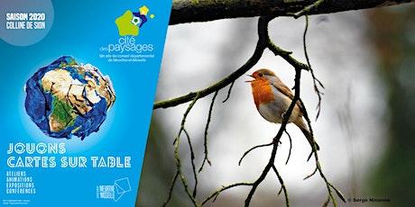 Mercredi des jardiniers : réaliser des nichoirs à oiseaux billets