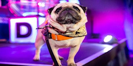 Dabbers Social Bingo: Doggie Bingo tickets