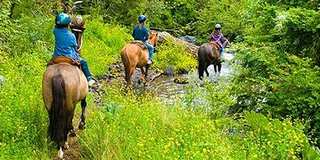 American Horse Council - Recreation Trails & Land Use Committee tickets