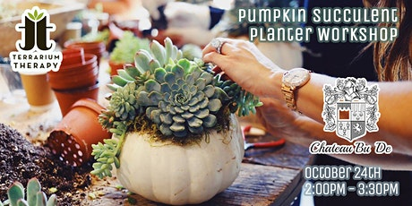 SOLD OUT- Pumpkin Succulent Planter at Chateau Bu De tickets
