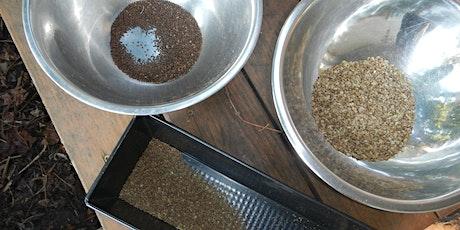 Seedsaving & the Winter Garden tickets