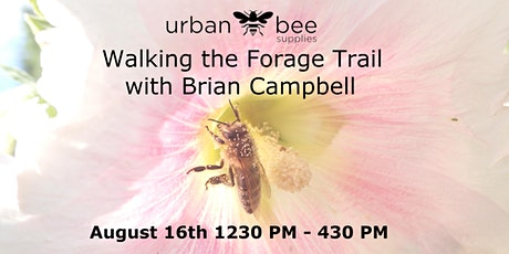 Walking the Forage Trail: a field workshop on flowers, bees and beekeeping. tickets