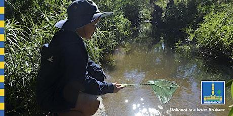 Bush Kindy - Downfall Creek tickets