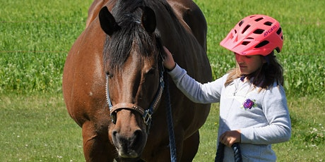Mindful Equine Youth After School Series tickets