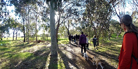 Guided walk through Lefevre Park / Nantu Wama (Park 6) tickets