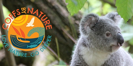 Coffs By Nature - Koalas of the Coffs Coast tickets