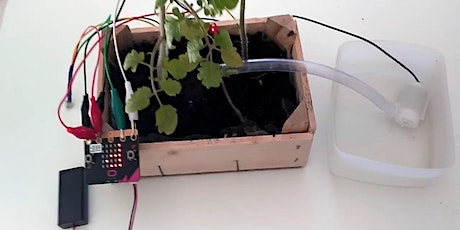 Automatic Plant Watering System [PIXEL Labs@NLB] | MakeIT Tickets