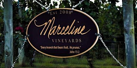Sip & Style |  Marceline Vineyards tickets