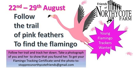 Flamingo Tracking Trail tickets