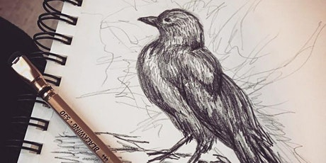 The Fine Art of Pencil Illustration & Drawing From the Natural World [Sept] tickets
