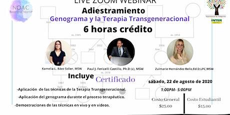 Adiestramiento: Genograma y Terapia Transgeneracional ingressos