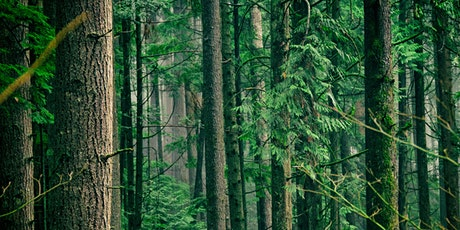 Meet the Nisqually Community Forest! Online Panel Discussion tickets