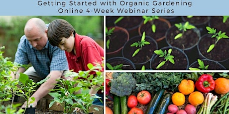 Grow Your Groceries: Getting Started with Organic Gardening, Online 4-Week tickets