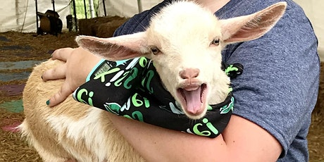 Goat Yoga Nashville - Sensational September tickets