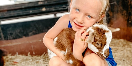 Goat Snuggle (no yoga) at Lucky Dog Farm - Wentzville, MO tickets