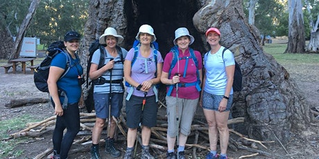 Wednesday Walks for Women - Belair Waterfall Hike 16th of September tickets