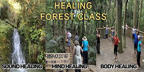 Healing Forest Tour NZ tickets