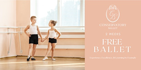TWO WEEKS FREE  Live Ballet Class - Prince and Princesses tickets