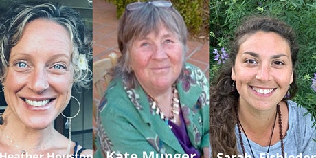 Sisters in Harmony Global with Kate Munger  and Sarah Fishleder tickets