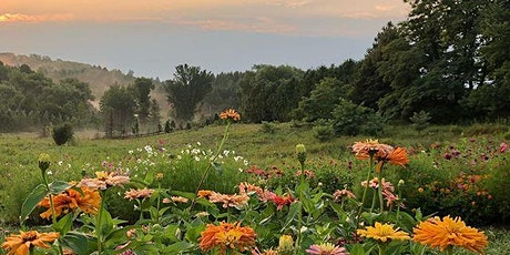 Cut your own Flowers - Evening of Wednesday, August 19 tickets