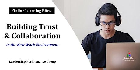 Building Trust & Collaboration (Online - Run 7) tickets