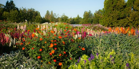 Date Night  at a Flower Farm tickets
