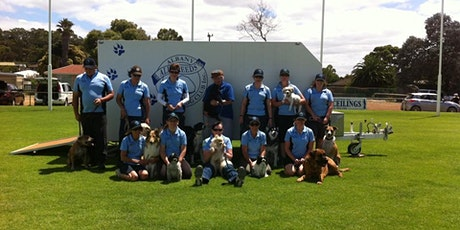Albany All Breed Dog Club Round Four Beginners tickets